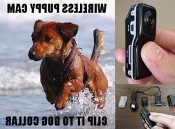 Wireless Pet Dog Video Camera Recorder Cam Video Color Audio
